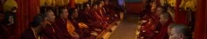 moine du tibet