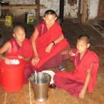 petits moines