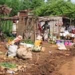 bazars au bord de la route