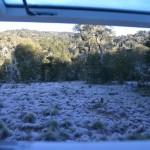1 ere gelée a HUELBUTA le matin au reveil