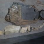Momie au musée de San Miguel